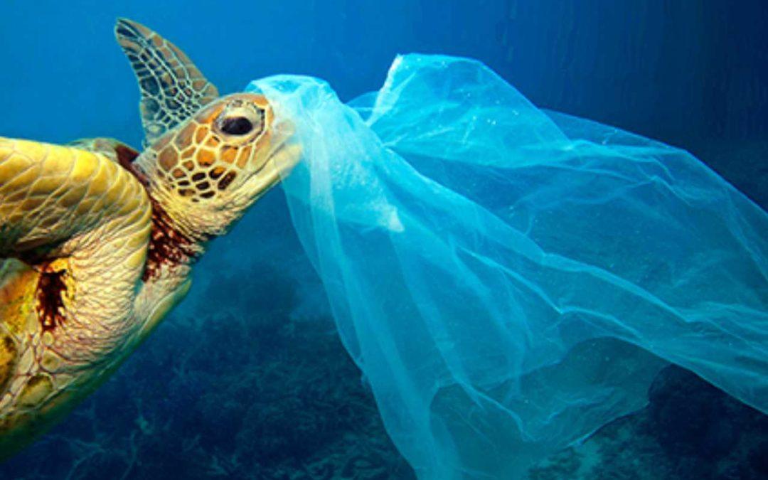 Stop jednokratnoj plastici